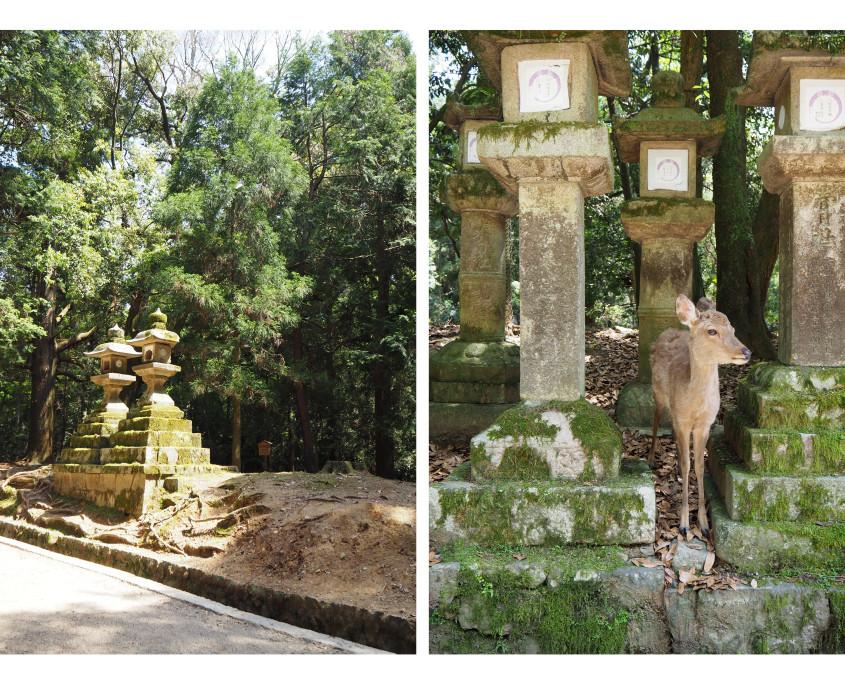 180623 photos Japan122
