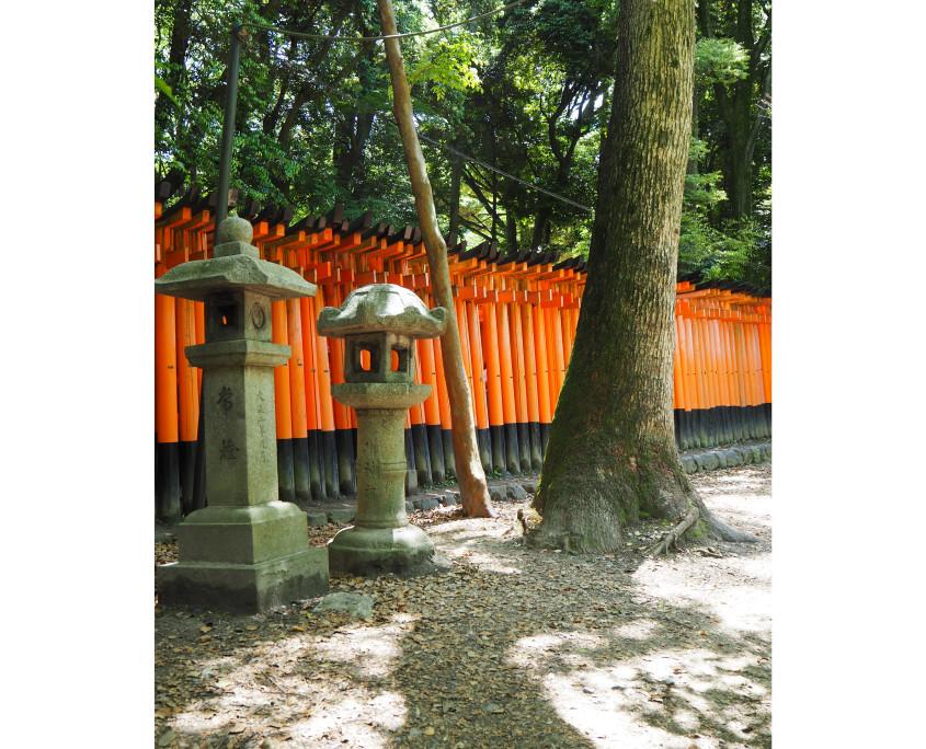 180623 photos Japan66