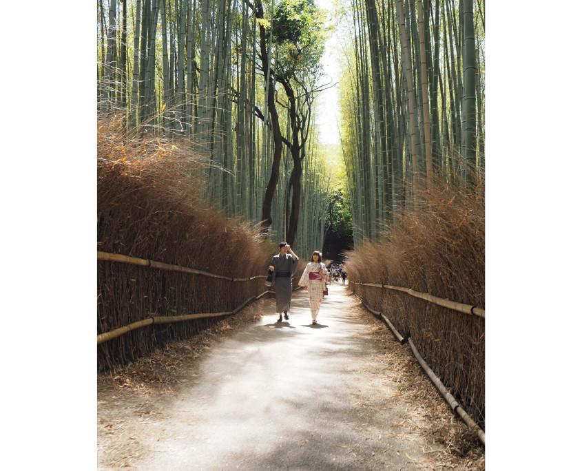 180623 photos Japan75